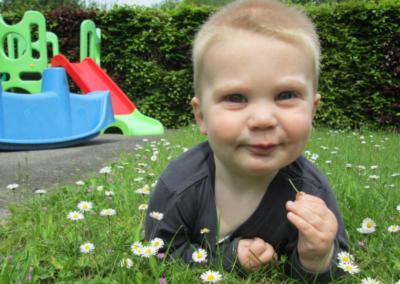 Nikibel kinderopvang spelen in de tuin in het gras madeliefje